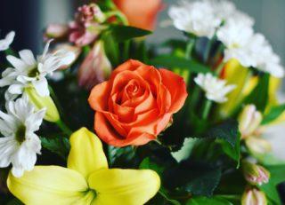 swoon 😍 #feelingspecial #flowers #nikon